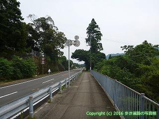 38-629高知県土佐清水市