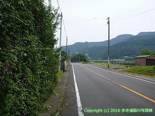 38-633高知県土佐清水市