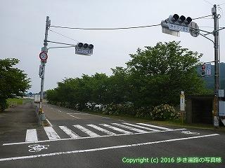 38-637高知県土佐清水市
