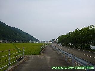 38-638高知県土佐清水市