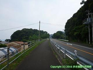38-654高知県土佐清水市