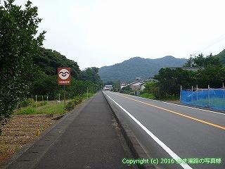 38-655高知県土佐清水市