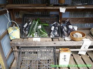 38-657高知県土佐清水市