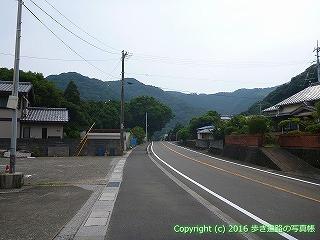38-658高知県土佐清水市