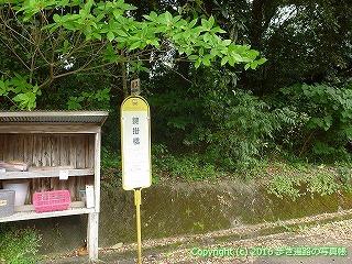 38-660高知県土佐清水市