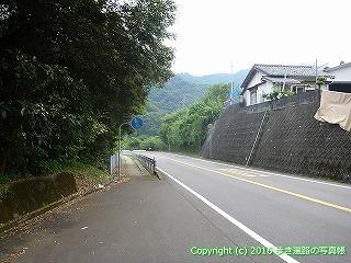 38-661高知県土佐清水市