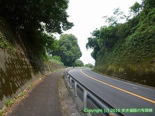 38-667高知県土佐清水市