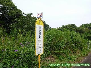 38-668高知県土佐清水市