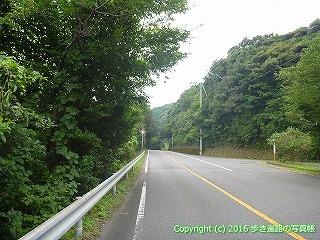 38-697高知県土佐清水市