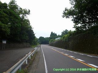 38-702高知県土佐清水市