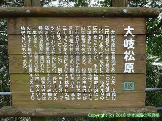 38-710高知県土佐清水市