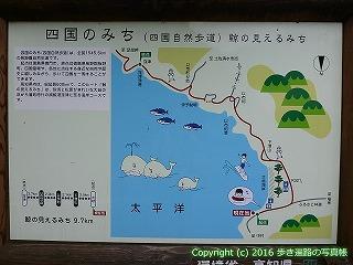 38-711高知県土佐清水市
