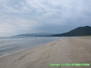 38-729高知県土佐清水市