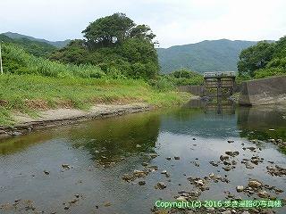38-733高知県土佐清水市