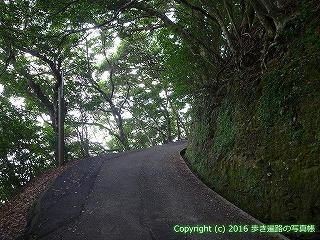 38-740高知県土佐清水市