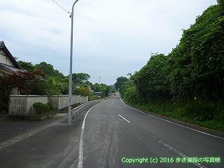 38-743高知県土佐清水市