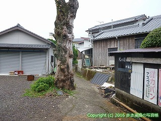 38-752高知県土佐清水市