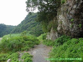 38-772高知県土佐清水市
