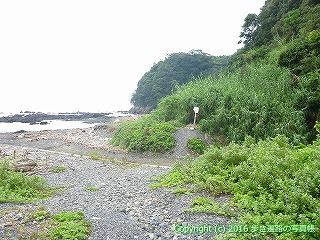 38-774高知県土佐清水市