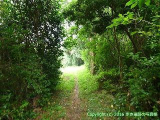 38-796高知県土佐清水市
