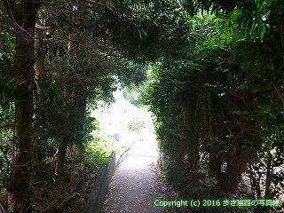 38-798高知県土佐清水市