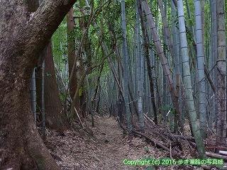 38-800高知県土佐清水市