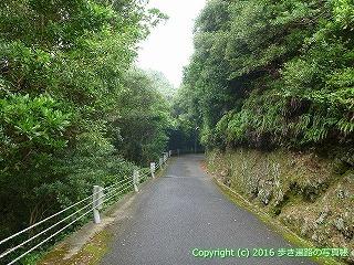 38-804高知県土佐清水市