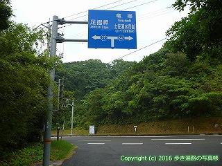 38-805高知県土佐清水市以布利分岐点