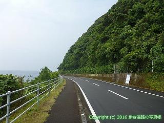 38-810高知県土佐清水市