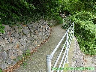 38-831高知県土佐清水市
