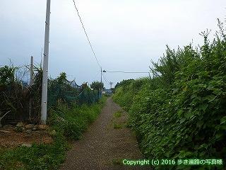 38-835高知県土佐清水市