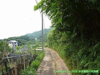 38-838高知県土佐清水市