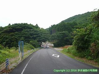 38-847高知県土佐清水市