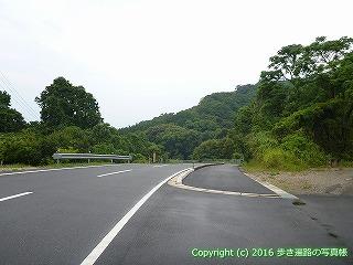38-852高知県土佐清水市