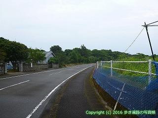 38-853高知県土佐清水市
