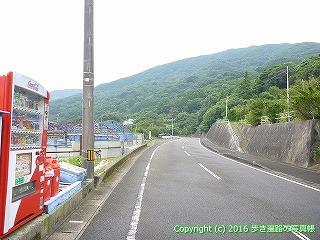 38-858高知県土佐清水市