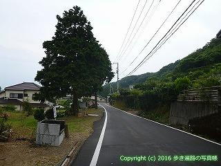 38-863高知県土佐清水市