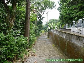 38-876高知県土佐清水市