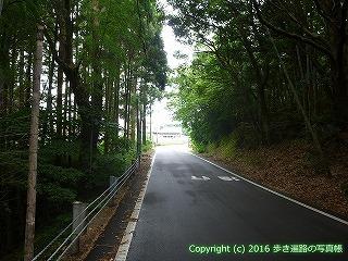 38-882高知県土佐清水市