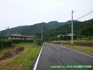 38-890高知県土佐清水市