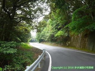38-892高知県土佐清水市
