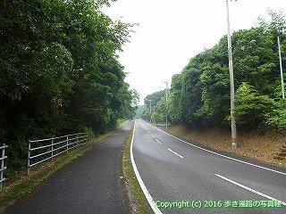38-893高知県土佐清水市