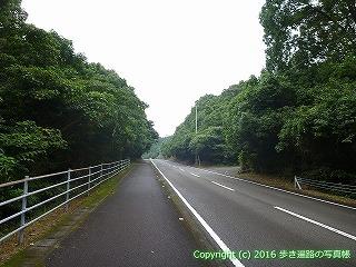 38-894高知県土佐清水市