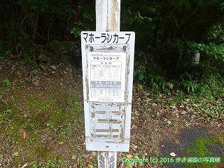 38-895高知県土佐清水市