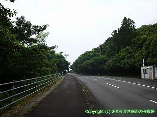 38-898高知県土佐清水市