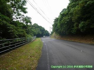 38-902高知県土佐清水市