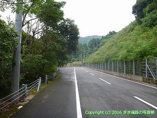 38-906高知県土佐清水市