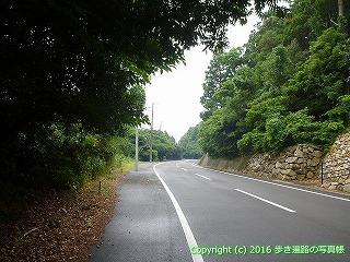 38-907高知県土佐清水市