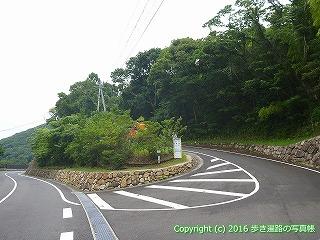 38-913高知県土佐清水市
