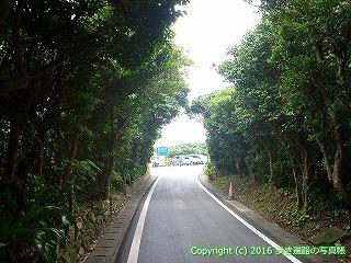 38-929高知県土佐清水市